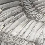 Metalier Aluminium liquid metal coating.  Textured metal finish in WIngs pattern