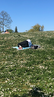 I take a nap in nature.PNG