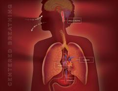 Health Education Video