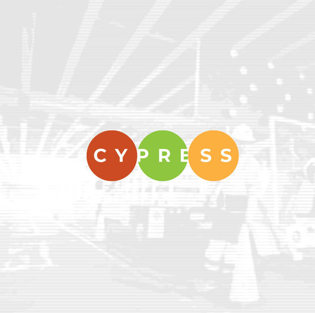 Cypress Systems
