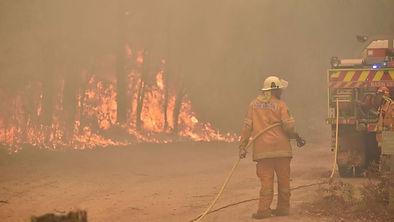 nsw-fires-jan.jpg