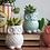 Thumbnail: Magnetic Stoneware Owl Planter