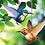 Thumbnail: Hummingbird Bouncie