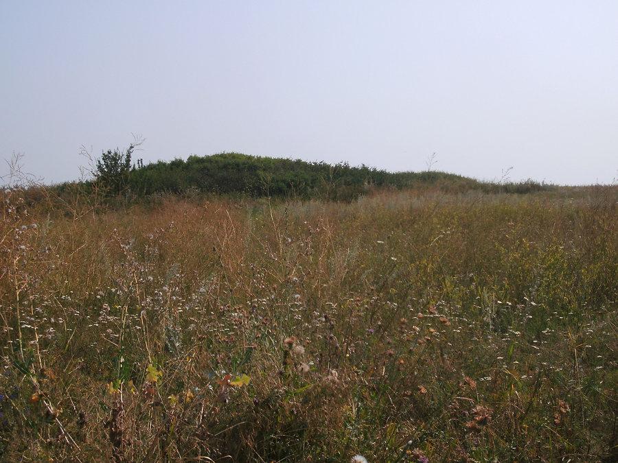Остатки отвала породы рудника Вистенгаузена в поле, район села Доброполье