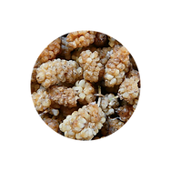 whitemulberries.png