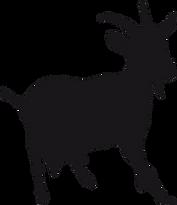 Chèvre sans fond.png