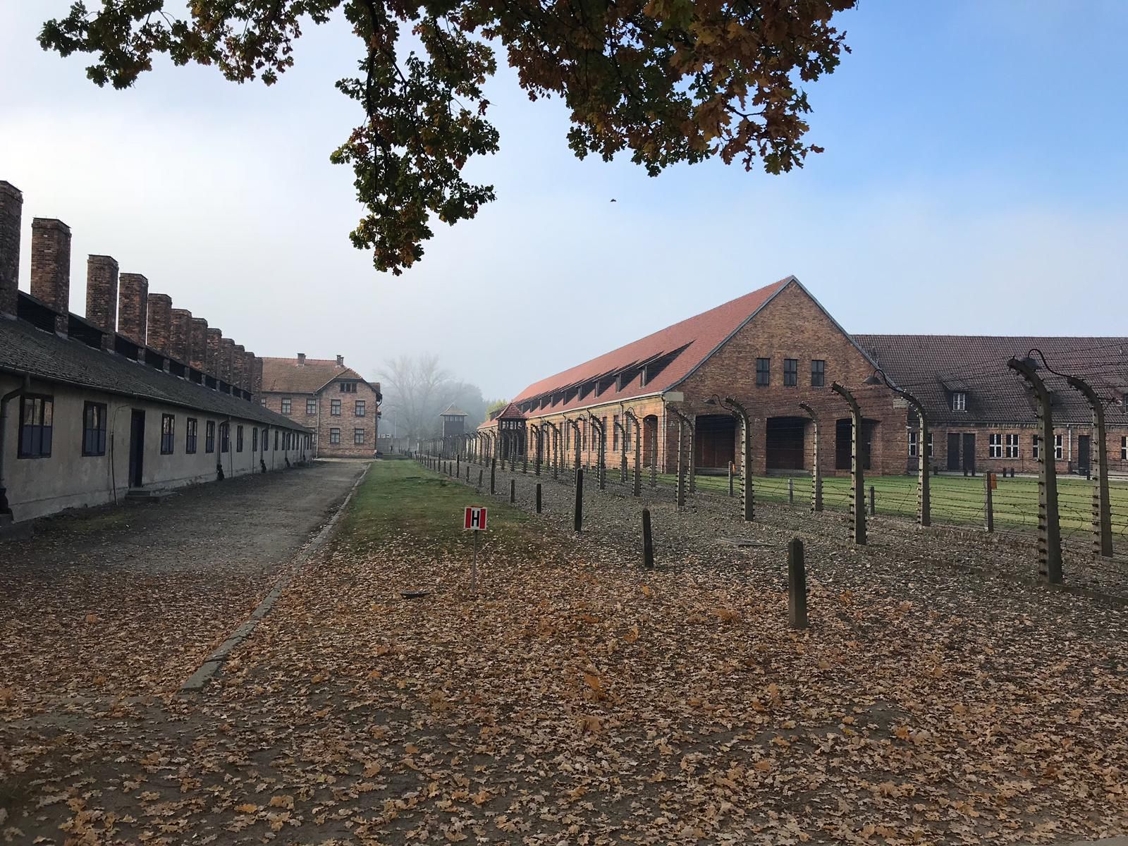 אושוויץ ובירקנאו
