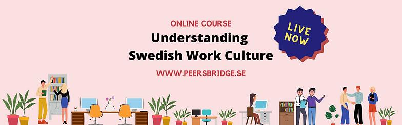 Copy of Copy of Swedish Workplace Cultur