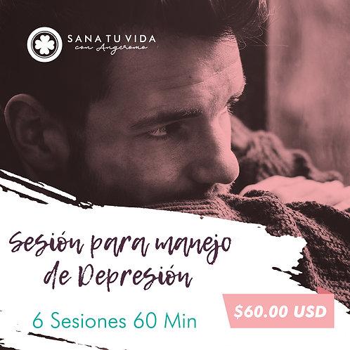 6 Sesiones para Manejo de depresión