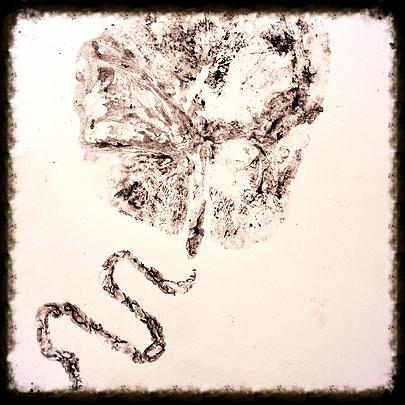 New Jersey placenta encapsulation