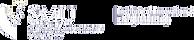 iie-logo_1.png