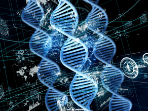 Could all your digital photos be stored as DNA?