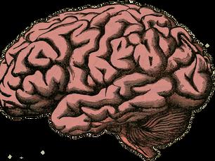 The Need for Neuroethics