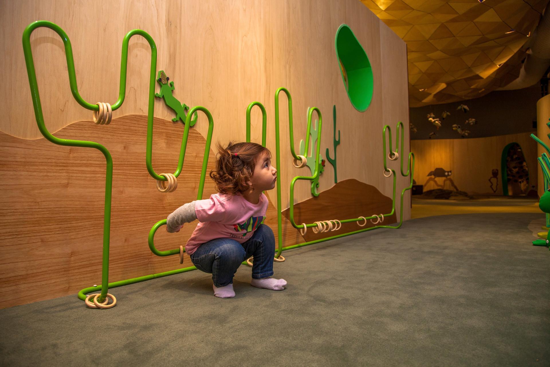 MUSEO- JUEGO CARDONES.jpg