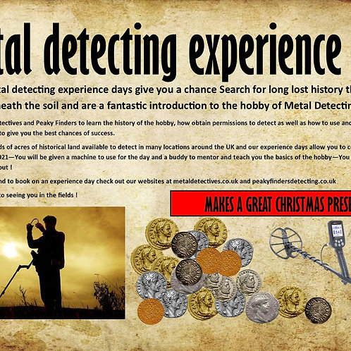 VIP DETECTING EXPERIENCE
