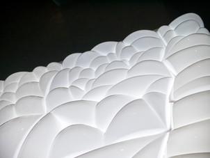 Phoam