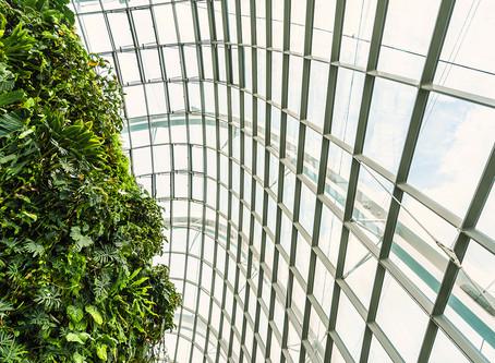 Invernaderos en la Agricultura Urbana