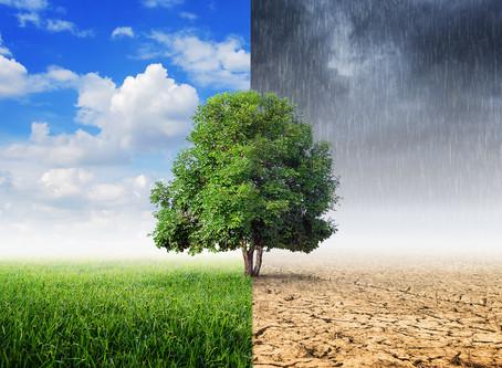 El Cambio Climático y la Agricultura Sustentable