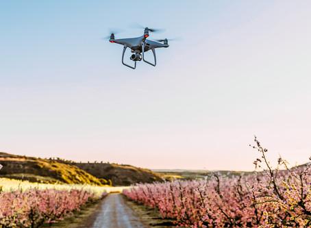 La Modernización de la Agroindustria