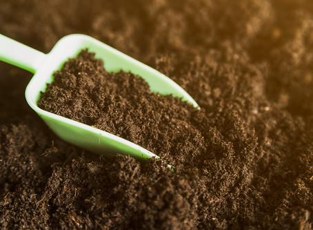 Los Retos Alimenticios para el Año 2050