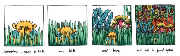 hide & no seek