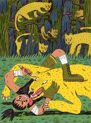 cat brawl
