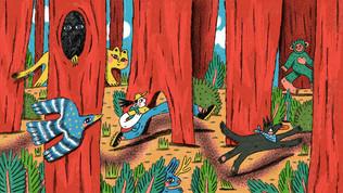 us rainforests