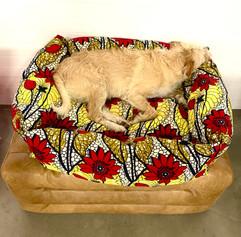 sleep in Africa Ein Hundebettchen  nach Wunsch.