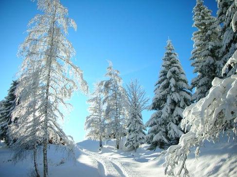 Randonnée raquettes Haute Savoie