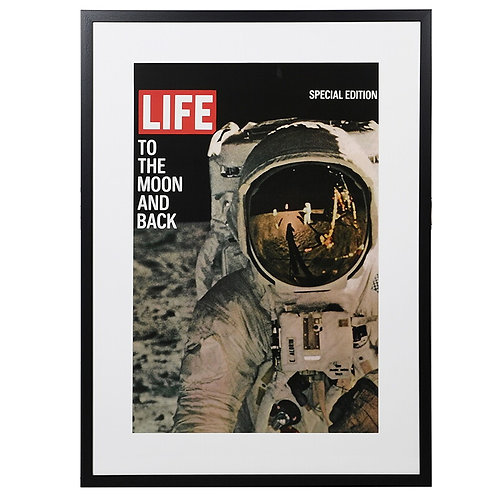 Astronaut 'Life' Picture