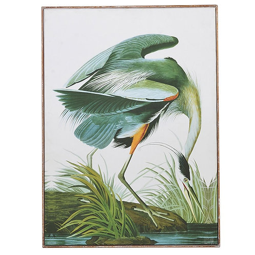 Green Tropical Crane Picture
