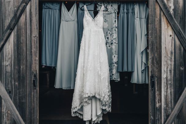 Janna & bridal party Dress pics