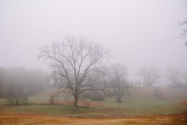 Fog settling in the hills