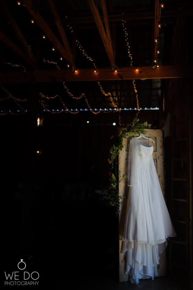 Hale's dress.jpg