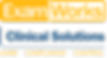 ExamWorks Logo.png