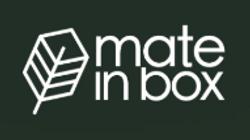 screenshot-mateinbox.com.br-2019.04