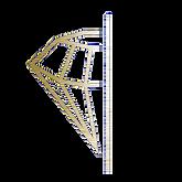 Diamond_transparent.PNG