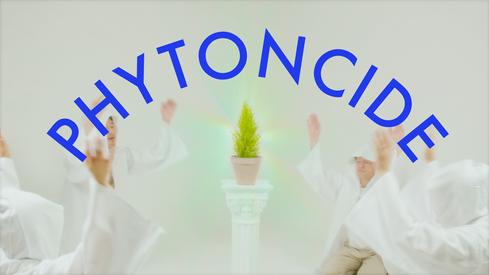 "SB Circle ""Phytoncide"""