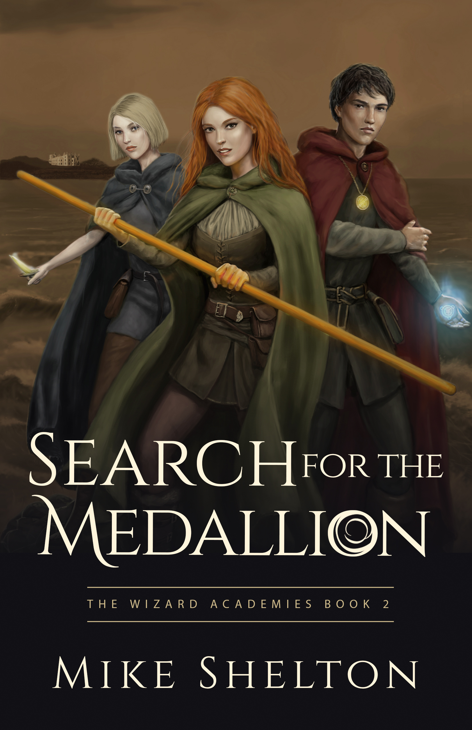 Search for the medallion cover5