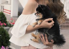 Dogby-Doo! สวัสดีบ้านใหม่ของการตัดเย็บเสื้อผ้าให้น้องหมา