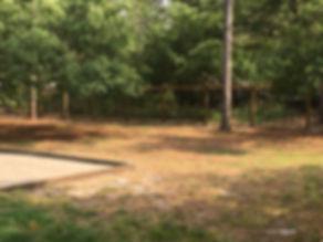 chicken wire fence.JPG