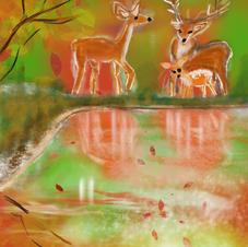 Deer Famiy