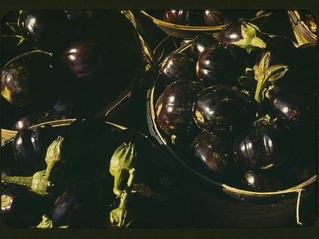 Lewis Prisco's Fried Eggplants Recipe
