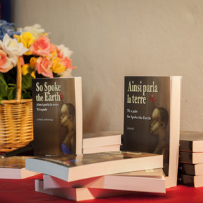 """2014 AWP Conference in Seattle: """"The Haiti I Know"""""""