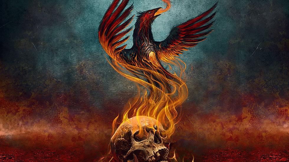 Frantic Amber - Burning Insight GATEFOLD VINYL Ltd