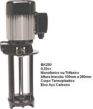 BK 250