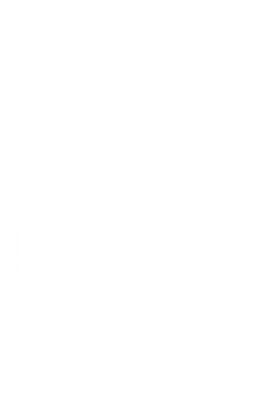 Positive-note_LOGO_A_white_RGB.png