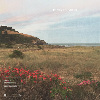 ItNeverFades_FinalCover4.png