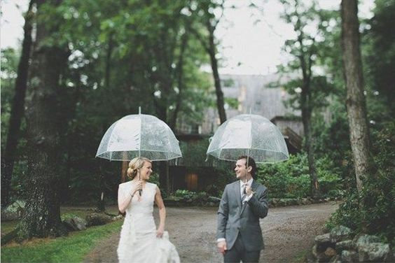 Clear Domed Umbrella