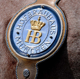 Pferdegeschirr Detail.JPG